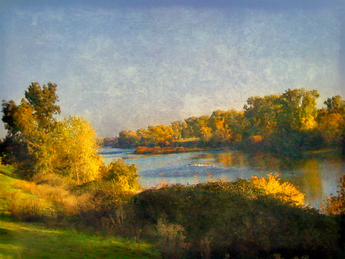 American River Fall Morning | by Greg Balzer