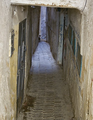 Alley, Fès | by Sara Maternini