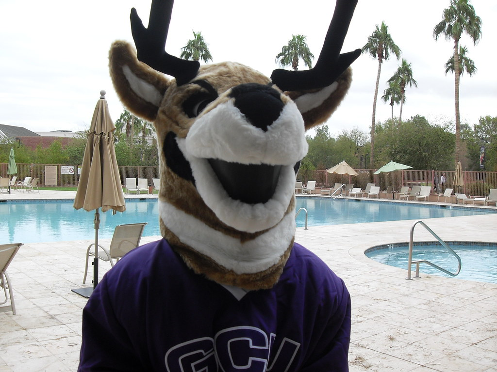 Thunder Gcu Mascot Grand Canyon University Flickr