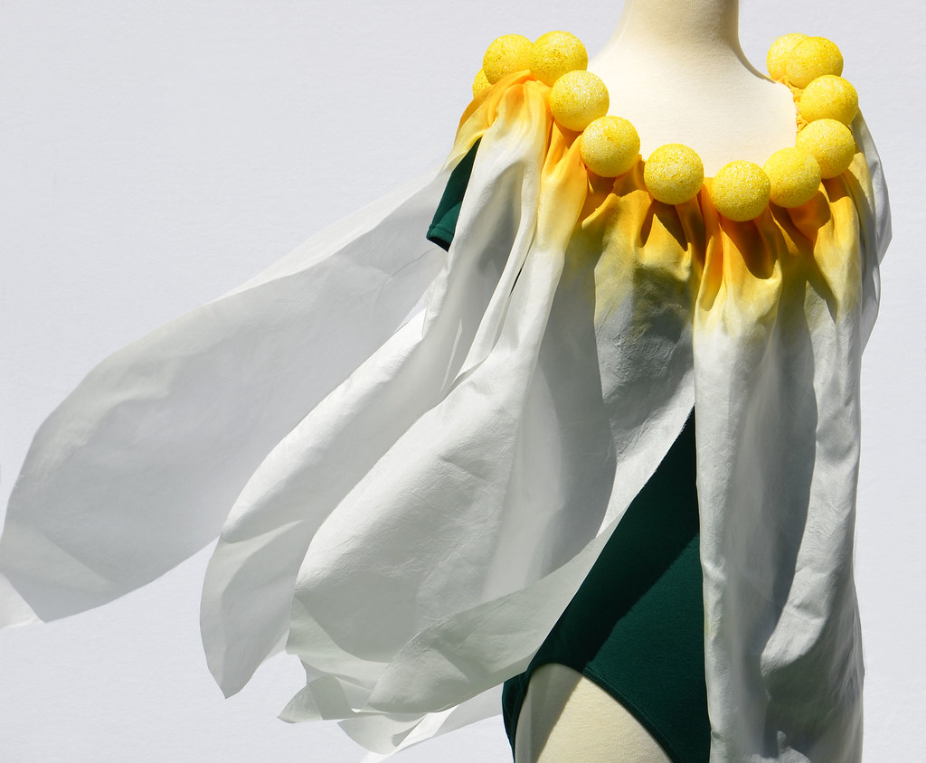 Dance Costume Daisy Flower Daisy Flower Costume Design Flickr