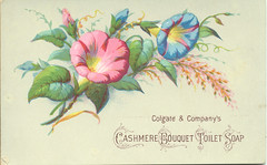 Colgate & Company | by Miami U. Libraries - Digital Collections