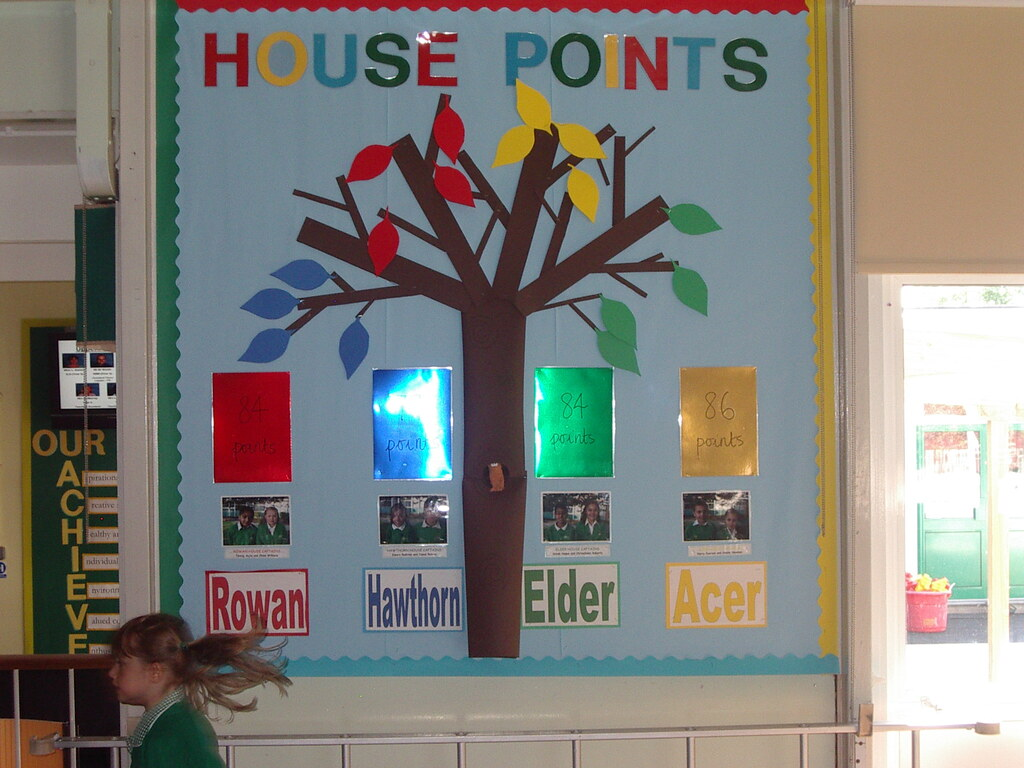 Trigger Point Charts: House point charts (come on Rowan!) | Lisa Stevens | Flickr,Chart