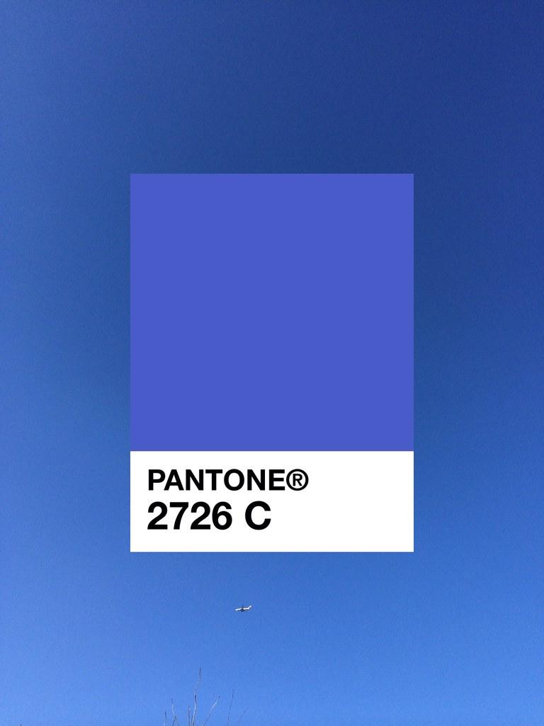 ... Pantone 2726 C | by andeecollard