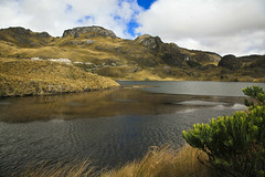 Cajas National Park | by Andras Jancsik