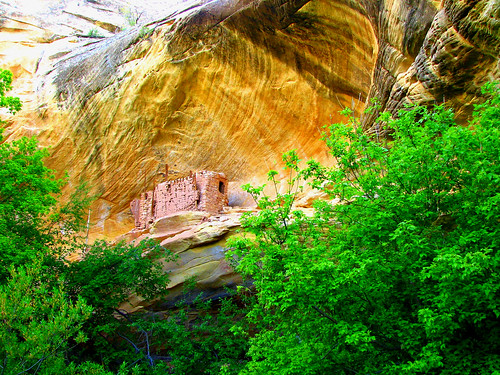 Cliff dwelling near Cave 7 | by Red Dirt Dawg
