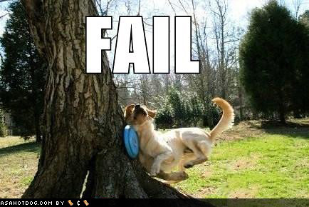 Dog Gets Hit In The Nads