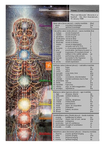 chakras (plexi) and vritis (propensities) | by Toby Ciranjiiva Tatsuyama-Kurk
