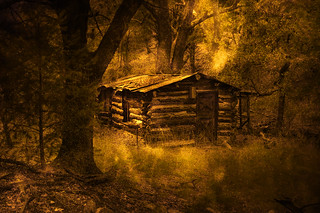 Cabin in the Lost Woods | by Eric Vondy