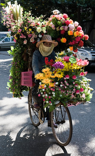 Flower Bike, Hanoi | by Zeblaze