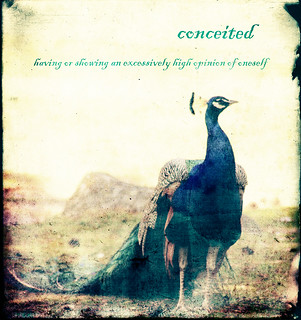 Dictionary of Image: Conceited | by Emely [MLY]