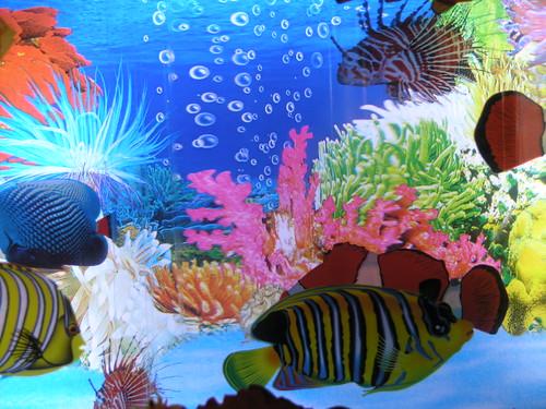 Toy aquarium super cool moving fish light aquarium for Fake fish tank with moving fish
