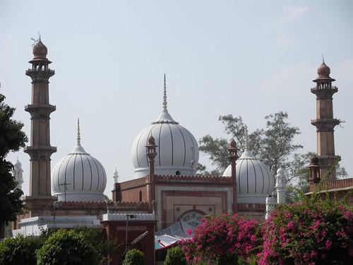 Jama Masjid, A.M.U.