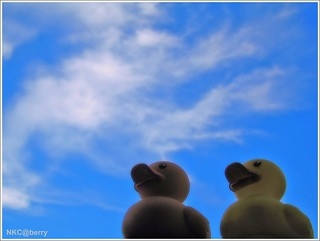 We Wish We Could Fly... | by NKC@berry (Away)