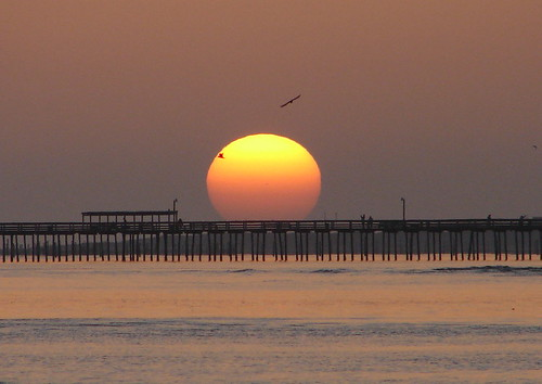 Lynnhaven fishing pier at sunrise with gulls on the for Lynnhaven fishing pier report