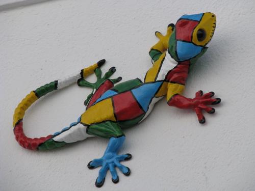 colorful salamander chris kuhn flickr