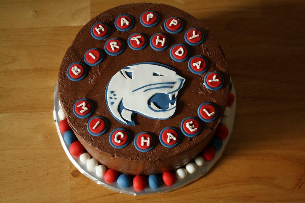 University Of South Alabama Birthday Cake Evan Davis Flickr
