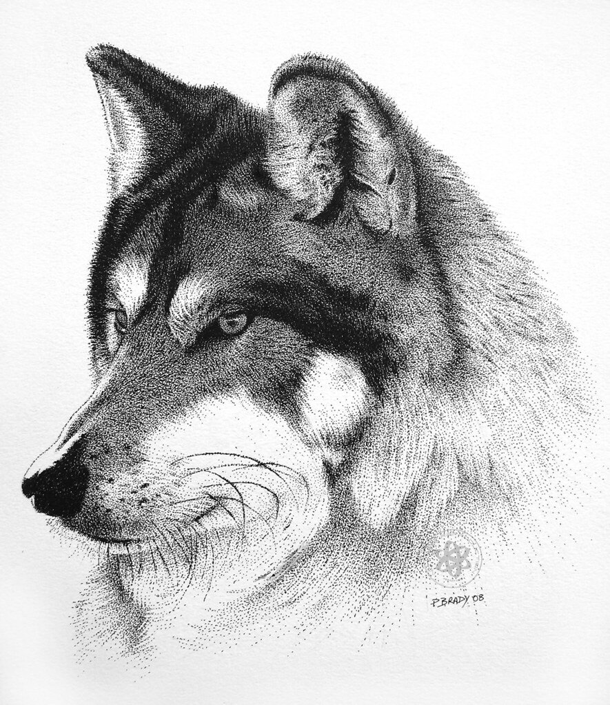 pointillism black and white. wolf | by pbradyart pointillism black and white c