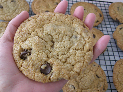 Chewy Chocolate Chip Cookies | by maybe strawberry