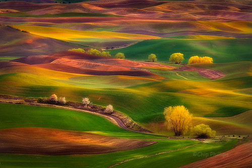 Sunset Glow Palouse | by Chip Phillips