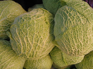 Savoy Cabbage | by foodistablog