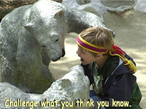 Challenge what you think | by caterwaul01