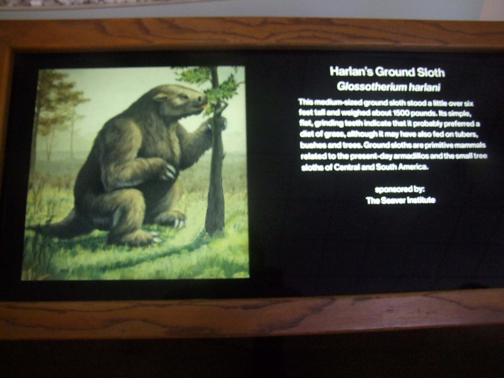 giant ground sloth by travis s