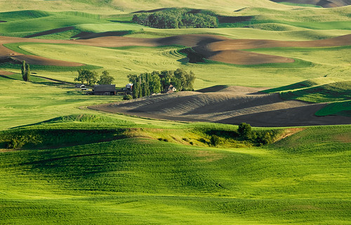 Palouse Farm | by Jeff Milsteen
