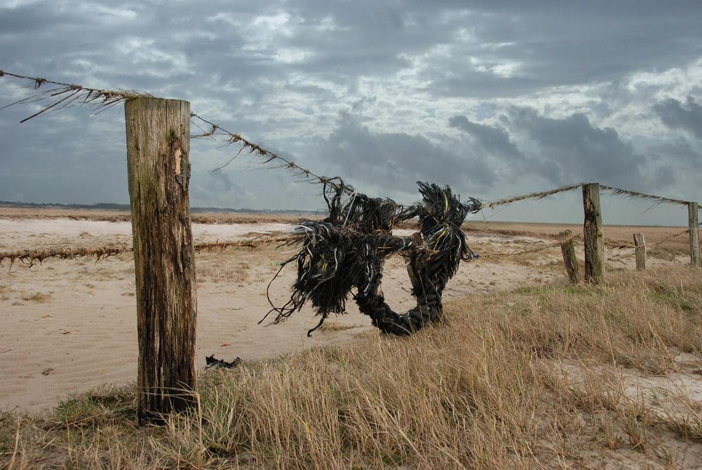 Tau Im Zaun Dickes Tau Verfangen Im Zaun Am Strand Von S Flickr