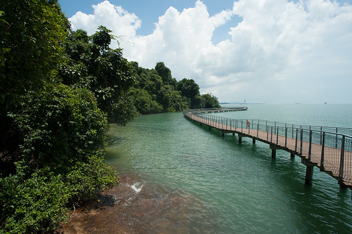 Super high tide on the Chek Jawa boardwalk