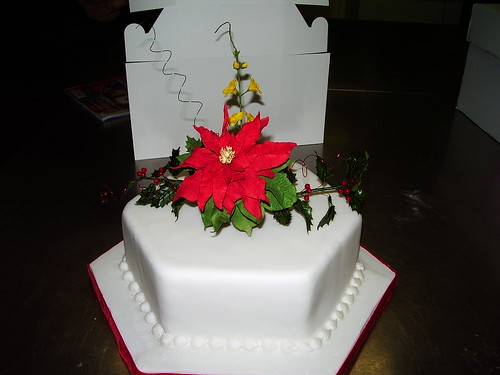 Poinsettia Sugar Flower spray Christmas Cake | by platypus1974