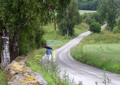 Umbrella On A Country Road | by snow41