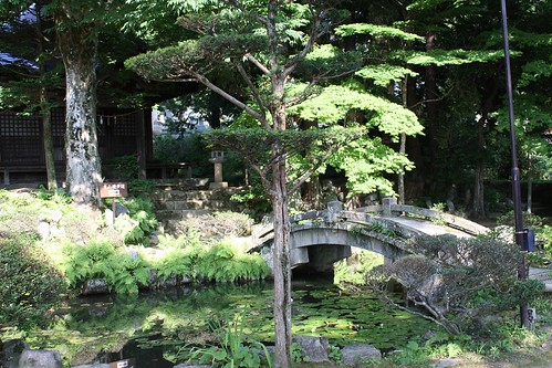 bridge at the Tensho-ji | by Doctor Memory