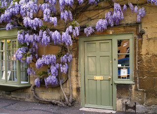 Wisteria cottage | by Neosnaps