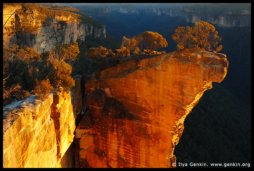 blue mountains australia how to get there
