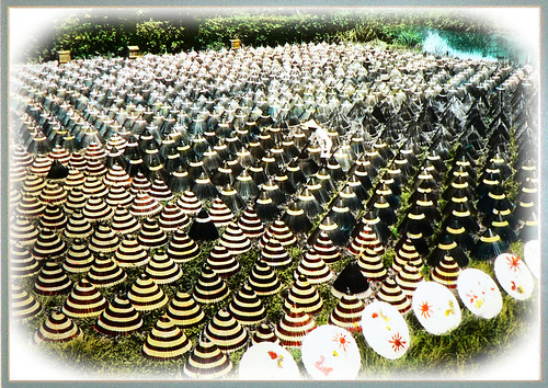 THE UMBRELLA FARM -- A Surrealistic View in Old Japan | by Okinawa Soba (Rob)