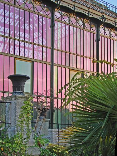 Le jardin des plantes paris les grandes serres au soleil flickr - Le jardin des plantes paris ...