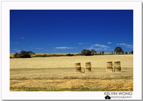 Country Scene - Haybale 郊外-草卷 | by Kelvin Wong (Away)