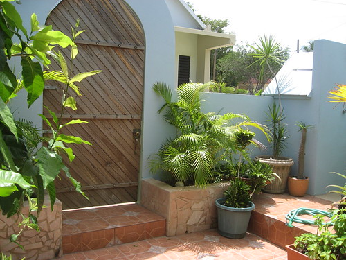 Palmetto Guesthouse Courtyard | by palmettoculebra