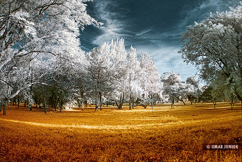 Parque Marinha do Brasil | Infrared | by Omar Junior