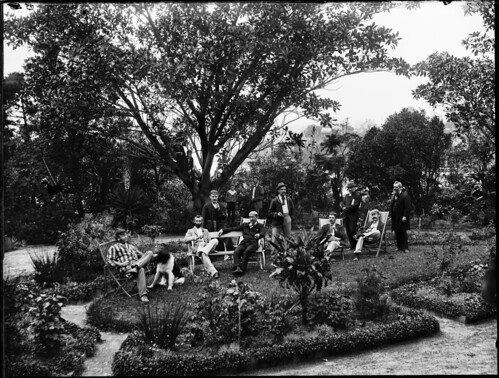 Garden scene with large group of men under large tree | by Powerhouse Museum Collection