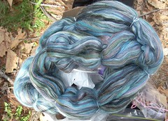 Merino/tussah from Sheep Shed | by Library Kat