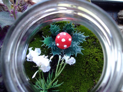 terrarium inside | by KnitXcorE
