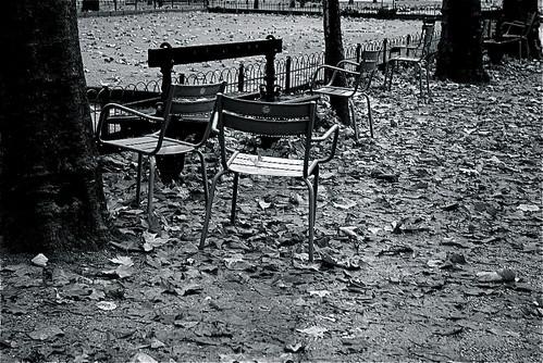 Au jardin du luxembourg paris noir et blanc regis for Jardin noir et blanc