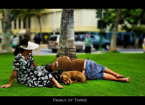 Family of three | by CrazyNotion (wandering and wondering)