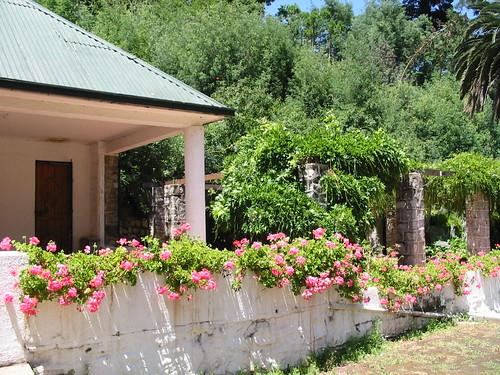 Casona laguna linneo jard n bot nico nacional vi a del for Jardin botanico vina