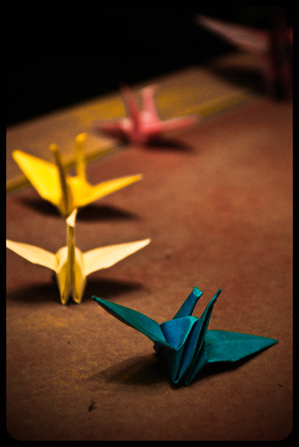 Who Doesn't Like These Paper Creatures? | by Jaredistakingphotos