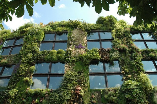 Paris, vertical gardens | by Snoeziesterre