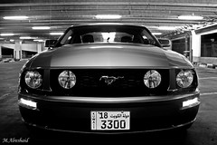 Mustang in Black & White | by Mishari Al-Reshaid Photography