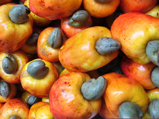Cashew Fruit | by The Hungry Cyclist