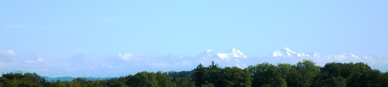 View of the Bernese Alps from Feldbrunnen